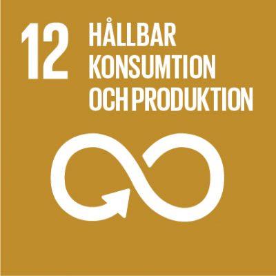 Ikon för FN:s globala mål nr 12.