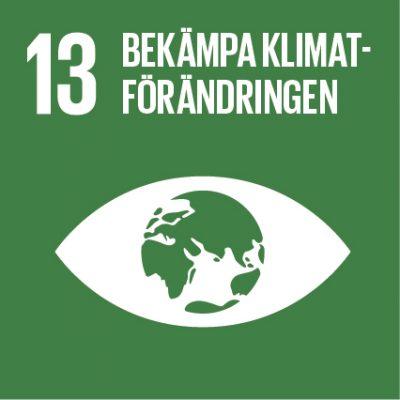 Öga med jordglob: Ikon för FN:s globala mål nr 13.
