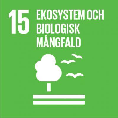Träd och måsar: Ikon för FN:s globala mål nr 15.